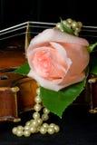 Romance dolce Immagine Stock