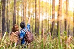 Romance en bosque Fotografía de archivo