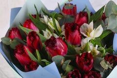 Romance flower bouquet. Romance bouquet with various flower Stock Images