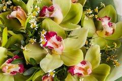 Romance flower bouquet. Romance bouquet with various flower Royalty Free Stock Photos