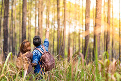 Romance in forest. An Asian couple romance in the pine forest with sunset, Thailand Stock Photography