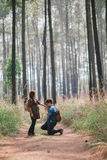 Romance in forest Stock Photography