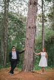 Romance in forest. A couple in formal dress black suit and white dress romance in the pine forest before wedding, Thailand Royalty Free Stock Photo