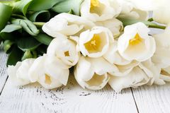 Romance gift, white tulips on bright wooden background Stock Photos