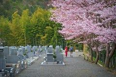 Romance japonés Foto de archivo