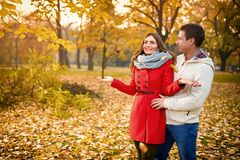 Romance in park with yellow leaves in autumn stock image