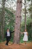 Romance na floresta foto de stock royalty free