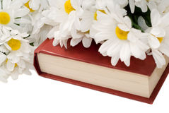 Romance Novel. Closeup view of a romance novel with some fake daisies sitting on top, isolated against a white background Royalty Free Stock Images