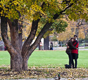Romance at park on autumn time Stock Photos