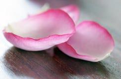 Romance pur Photo stock