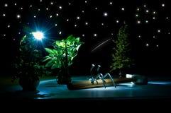 Romance sous le ciel étoilé Photographie stock