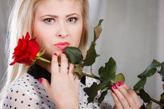 Woman holding red rose near face looking melancholic. Romance, valentine day gifts concept. Beautiful blonde young woman holding red rose near face looking Royalty Free Stock Photo
