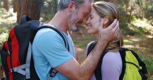 Romancing delle coppie della viandante faccia a faccia alla campagna video d archivio