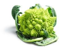 Romanesco硬花甘蓝或花椰菜在白色背景 库存照片