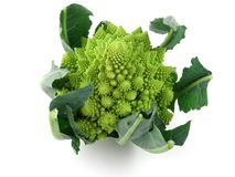 Romanesco. A fractal variation on broccoli Stock Photos