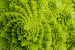 Romanesco Stock Images