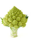 romanesco Obrazy Stock