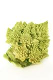 Romanesco Stock Photography
