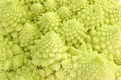 Romanesco. In Detail as background. Studio shot Royalty Free Stock Photography