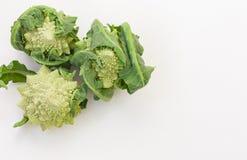 Romanesco Brassica Oleracea, rzymski kalafior odizolowywający na białym tle z przestrzenią dla teksta obraz stock