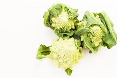 Romanesco Brassica Oleracea, rzymski kalafior odizolowywający na białym tle z przestrzenią dla teksta zdjęcie stock
