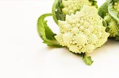 Romanesco Brassica Oleracea, rzymski kalafior odizolowywający na białym tle z przestrzenią dla teksta fotografia stock