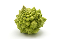 Romanesco broccoli. (or Roman Cauliflower) on a white background Royalty Free Stock Images