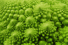 Romanesco broccoli. Closeup of romanesco broccoli green background Royalty Free Stock Photos