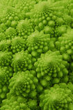 Romanesco broccoli. Close up of romanesco broccoli Royalty Free Stock Image