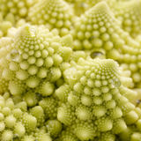 Romanesco broccoli Royalty Free Stock Photography