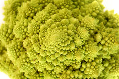 Romanesco Broccoli Stock Photography
