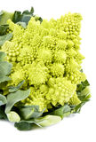 Romanesco Broccoli Stock Photo