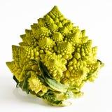Romanesco broccoli on a white background Royalty Free Stock Image