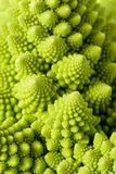Romanesco broccoli Royalty Free Stock Photo