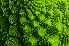 Romanesco broccoli cabbage marco Royalty Free Stock Photography