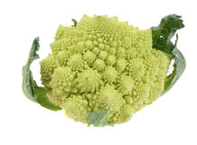 Romanesco Broccoli Cauliflower Stock Photography