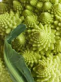 Romanesco broccoli cauliflower detail Stock Photography