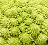 Romanesco broccoli close up Royalty Free Stock Photo