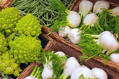 Romanesco broccoli and fennel Stock Photos