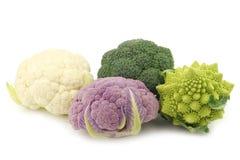 Romanesco broccoli, fresh cauliflower, purple cauliflower and green broccoli. On a white background Royalty Free Stock Image