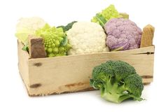 Romanesco broccoli, fresh cauliflower, purple cauliflower and green broccoli in a wooden crate. On a white background Stock Photography