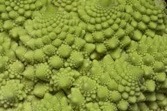 Romanesco broccoli arkivfoton