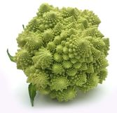 Romanesco broccoli. Over white background Stock Photography