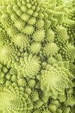 Romanesco broccoli vegetable texture Royalty Free Stock Image