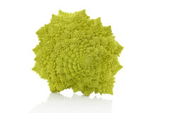 Romanesco broccoli. Royalty Free Stock Image