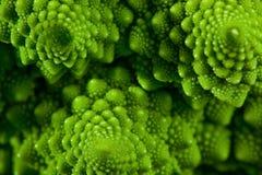 Romanesco brokułów kapusty marco Obraz Stock