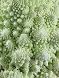 Romanesco brokuły Obrazy Stock