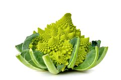 Romanesco cabbage Stock Photography