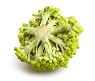 Romanesco cabbage Stock Photography