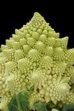 romanesco cauliflower брокколи римское Стоковое Изображение
